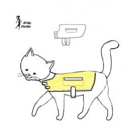 Kočičí pláštěnka Mourek